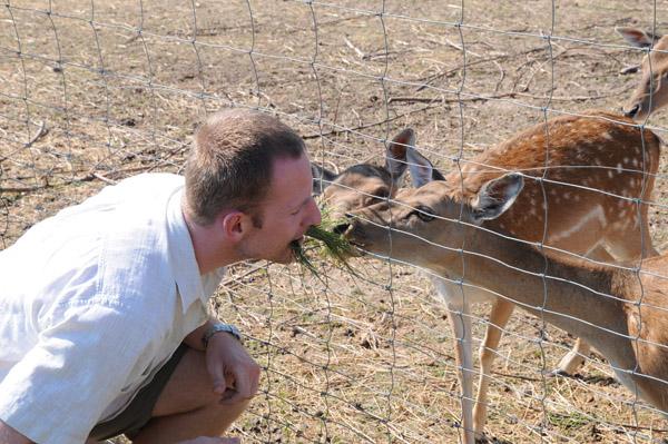 Część naszych zwierząt jest zupełnie oswojona. Jest to rzadki atut, dlatego jedna z naszych specjalizacji to dostawa zwierząt do hodowli parkowych, gdzie wymagane są zwierzęta nie obawiające się ludzi.