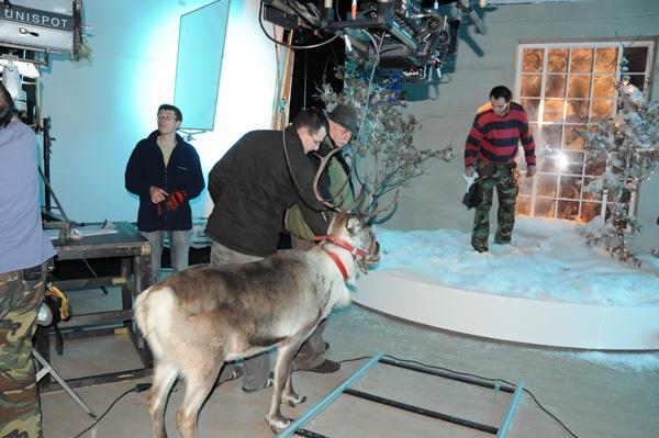 Rudolf spełnił swoje zadanie w 100%. Pozostawał spokojny przez cały dzień nagrań, jak gdyby praca gwiazdy filmowej była jego codziennym chlebem.