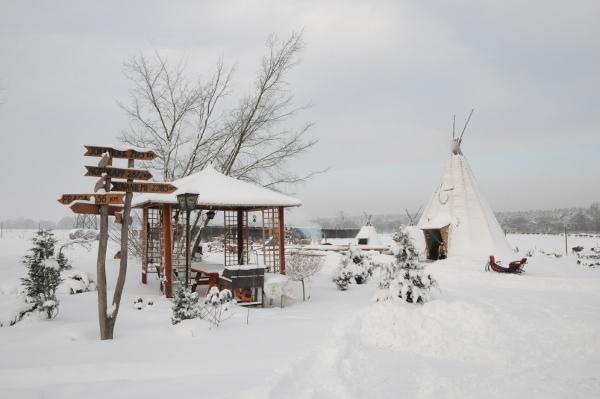 Śnieg zasypał wszystko i wydaje się, że do wiosny w naszym gospodarstwie nic się nie będzie działo. Otóż - to tylko mylące pozory! :)