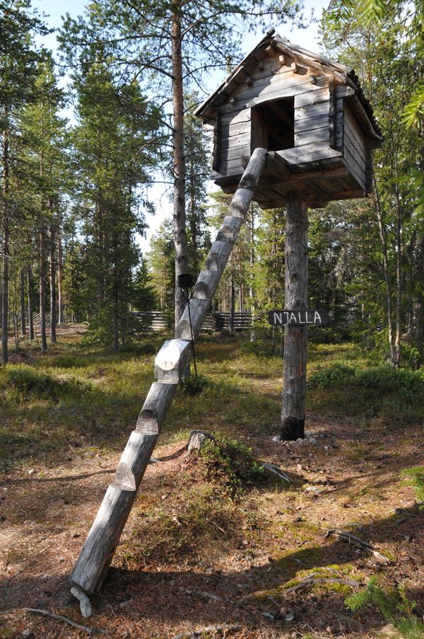 Tak wygląda tradycyjna spiżarnia w osadzie Samów leśnych. Jej wyjątkowa budowa zabezpiecza ją przed dostępem nieproszonych gości - np. niedźwiedzi. Być może podobną będzie można zobaczyć już wkrótce w naszej Wiosce Lapońskiej... :)