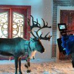 Rudolf w twarzowym szaliku, czyli reklama dla LIDLA