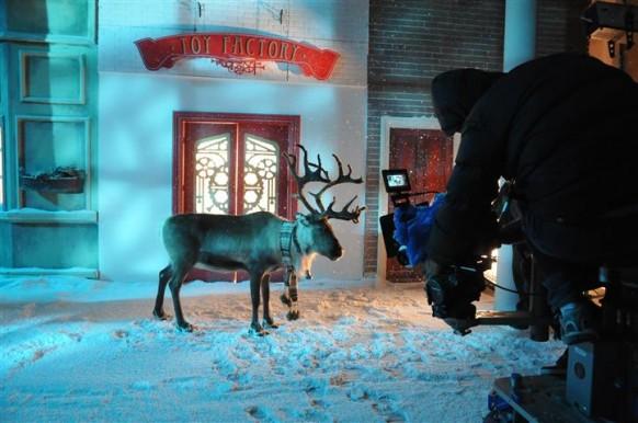 Renifer Rudolf na planie filmowym.